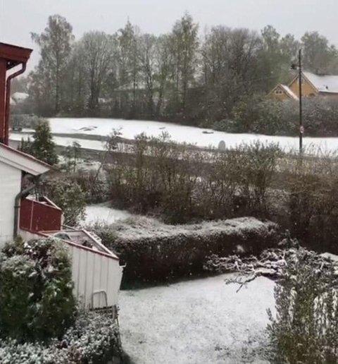 MAI-SNØ: Østlandet våknet opp til snø onsdag 10. mai. Dette bildet er fra Eiksmarka i Bærum.