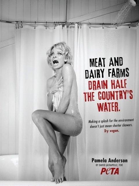 OPPFORDRER FOLK TIL Å SPISE MER VEGETARMAT: Pamela Anderson for PETA.