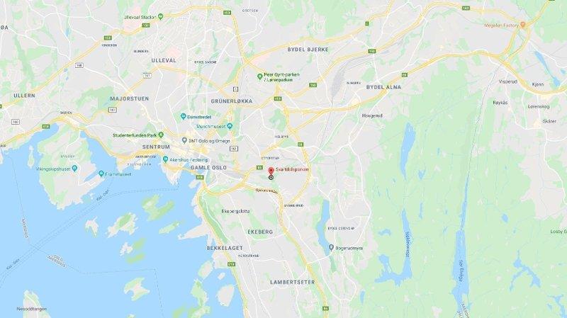 VOLD: Hendelsen skal ha skjedd i nærheten av Svartdalsparken i Oslo.