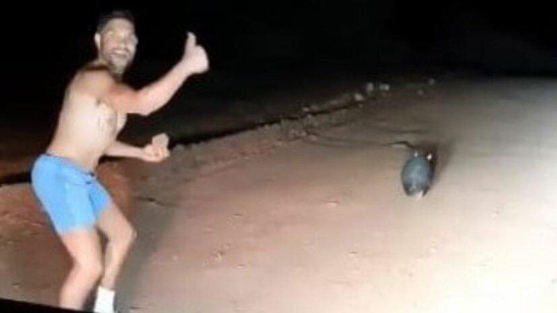 Politimannen smilte og gav tommel opp mens han jaget det vettskremte dyret.