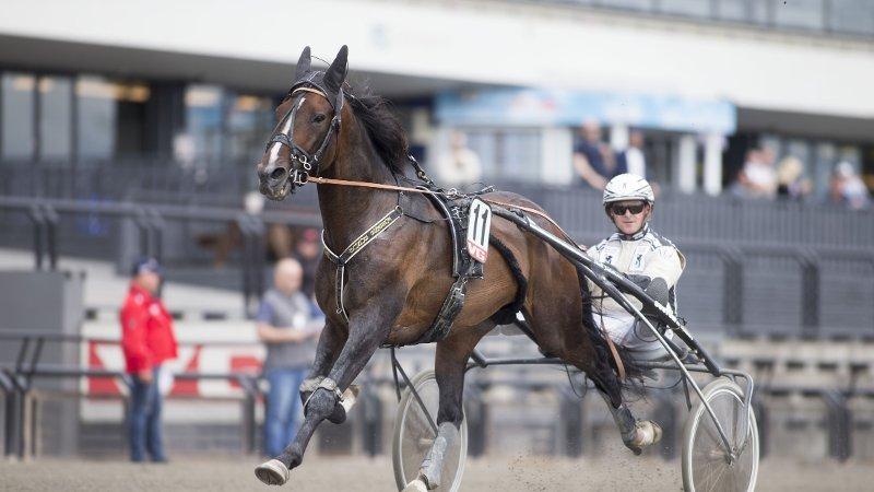 Bjerke09072015_Magnus Jakobsson vant l¿p 5 med Fossens Bonus_foto_Roger Svalsr¿d_hesteguiden.com