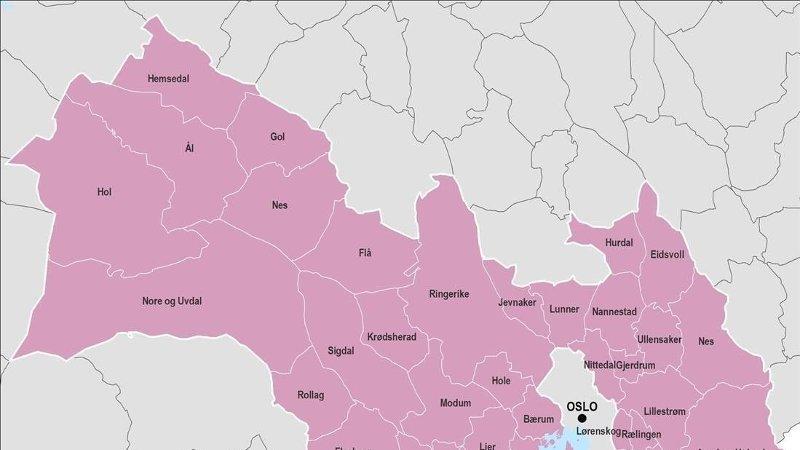 FRA HALDEN TIL HEMSEDAL: Slik ser det nye Viken fylke ut med kommunene som er en del av storfylket fra 2020.