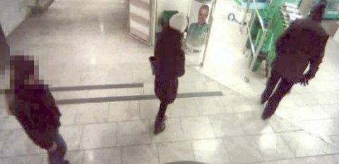 To kvinner, den ene serbisk statsborger på 27 år, den andre fransk statsborger på 37, ble i begynnelsen av 2014 pågrepet i forbindelse med et tyveri i en butikk på Østlandet.