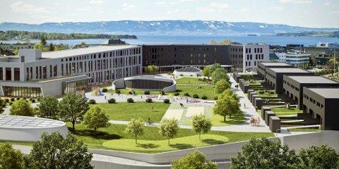 KAN SE FOR SEG PARKEN: Megler Erlend Kvaløy tror det videre salget av boliger på Hamar stadion vil gli greit når flere interesserte får en forestilling av hvordan parkområdet kommer til å se ut.