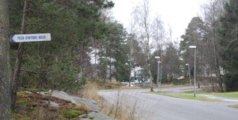 SKAL BYGGE: Her i Peer Gynts vei like ved sykehuset i Moss (SØM) er det allerede kommunale boliger. Nå ønsker kommunen å bygge 20 leiligheter på en tomt i Peer Gynts vei 89. Foto: Therese Alne Bolin