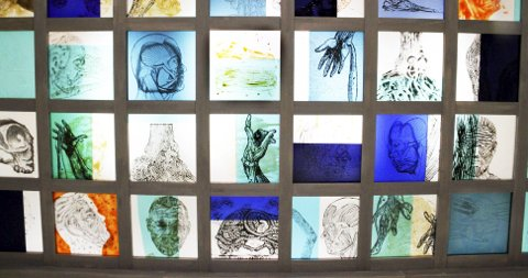 Glasskunst: Slik ser Tor Lindrupsens glasstegninger med anatomiske motiv ut.