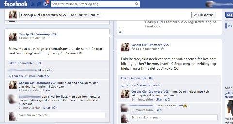 NETTMOBBING: Flere elever har blitt sjikanert på Facebook-sidene. SKJERMDUMP/FOTO: FRIDA ANDERSEN