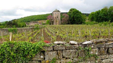 Fra Burgund.