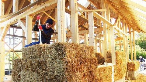 HALM: Hus bygd av bygg.