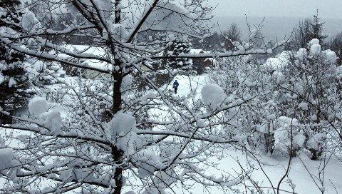 DET SNØR OG DET SNØR: I Elverum var snødybden 37 centimeter i går morges, og kontrasten er stor til hvordan måneden ble innledet med grønne plener.