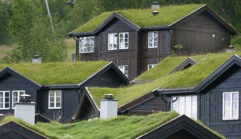 Torvtak med grønt gress er fortsatt det mest vanlige i Hytte-Norge.