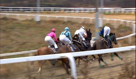Espen Ski har dyttet Madeleine Haugland, som bare såvidt klarer å holde seg på hesten.