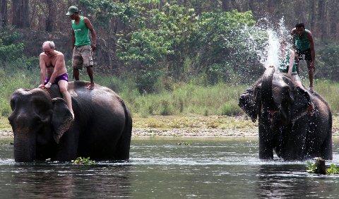 Etter først å ha vært med på å skrubbe elefanter i elva, er det turistenes tur å bli badet, eller riktigere sagt dusjet.