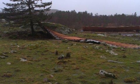 Sauehuset ble ødelagt av vinden, og dyr skal være skadet.