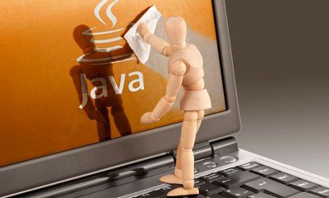 Vanlige forbrukere kan surfe på nettet uten å ha behov for Java.