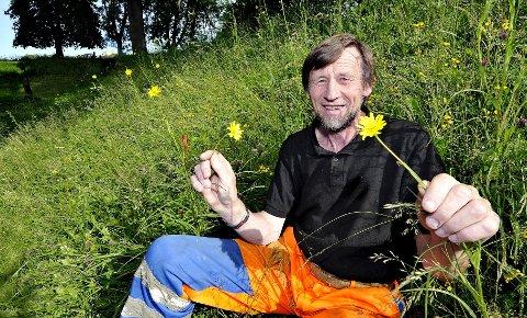 Blomstereng: Ragnar Dahl studerer planten sveve. En av vekstene ved Svarteporten. ALLE FOTO: TROND THORVALDSEN