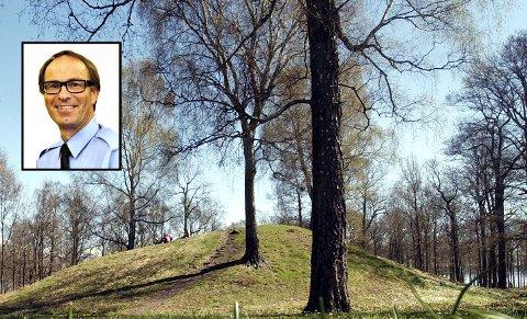 Opplevelsesbyen bør strekke seg fra Karljohansvern til Slagentangen med Borre som kongen på haugen, skriver Arnt Folvik.