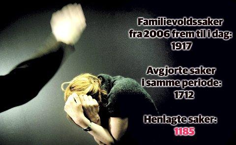 Dette er fasiten for alle familievoldssakene i Søndre Buskerud siden 1. januar 2006. – Samtidig vet vi det er store mørketall der ute, sier Anne Bente Kentsrud i politiet.