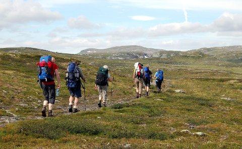 Flatt terreng gjør at Hardangervidda er godt egnet for nybegynnere i fjellet.