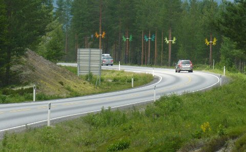 Statens vegvesen støtter seg på en undersøkelse som viser at folk har tro på elggevirene – og andre tiltak som gjennomføres langs riksveg 3 i Østerdalen.
