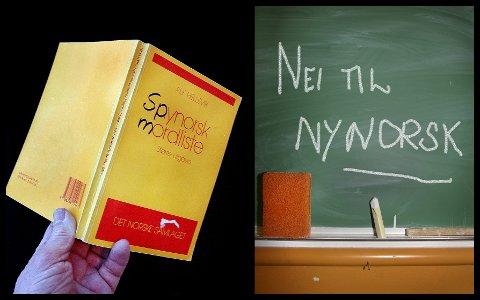 Nynorsk er et lite populært fag blant elevene.