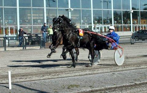 GALOPP: Mediaas Odin og kusk Christine E. Masser vinner Vestfold Travforbunds løp for 3-årige kaldblodshester. I bakgrunnen galopperer Stjerne Ask fra seieren. FOTO: ALEKSANDER LIMKJÆR