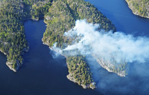 SKOGBRANN: Lørdag kveld rykket brannvesen og politi ut etter melding om en skogbrann i Hallevannet i Larvik.