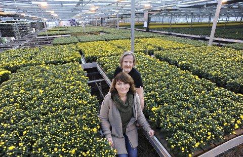 Jubileum: Til høsten vil Kristin Schrader og mannen Eystein Ruud feire 80 år med blomster sammen med de ansatte.begge foto: Ole kr. trana
