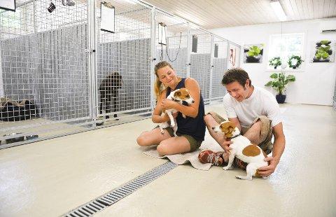Renate og Fredrik Engell Sæthereng koser seg med sine firbente gjester i det moderne og romslige hundehuset med aircondition. Ekteparet har brukt mye penger, tid og krefter for å realisere en drøm de har hatt i mange år.