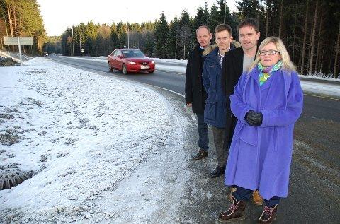 Tonje Olsen, Håvard Osflaten, Tage Pettersen og Reidar Kaabbel (bakerst) vil be om å omklassifisere fylkesvei 120 til riksvei.