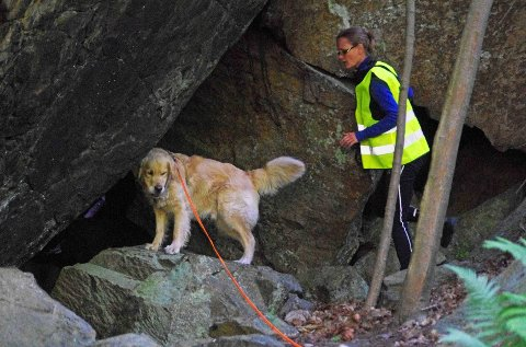 Balder og eier Ingvild Bjerke gjør søk i det ulendte området i skogen ved Filtvet kirke.