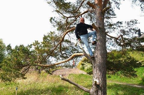 Det blir hogd altfor mange trær i verden, sier nabo og naturelsker Terje Bratt, som satte seg i furua for å hindre at den hogges. Gravemaskinen nærmer seg i bakgrunnen.