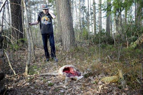 Erik Skjellerudsveen ble møtt av et blodig kadaver da han var ute og ryddet i hagen.