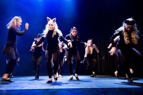 Hyller dansen. Dansekompaniet Dance In gjør en spennende scene fra «Cats» under søndagens forestilling i Speilet. Alle foto: Johnny Leo Johansen