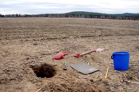 Her ble en vikingkvinne begravd for 1.200 år siden. Jordet var ikke her, men åsene rundt var de samme.