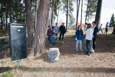 MYE SØPPEL: Hver vår kommer søpla fram langs Mjøsa. I fjor ble det plukket 4.566 kilo søppel.