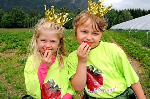 MMMMMM... Jordbær smaker godt, synes prinsessene Andrea Lothe Sætha (5) (t.v.) og Vårild Skaar Thorsrud (9). Lørdag kan du møte dem og mange andre på Jordbæreventyret i Sylling.