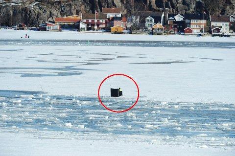 Fotografen sto på Smørberg da han tok bildet. I bakgrunnen ser du bebyggelsen i Nordbyen.