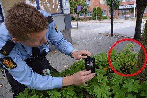Politibetjent Harald Hvaal sørget for å dokumentere hvor plantene var funnet. Et liiite steinkast unna politistasjonen. Foto: Sigfrid Kvasjord
