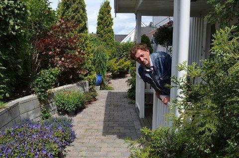 Det er blitt langt mer enn de to tujaene Terje Johansen egentlig skulle ha på eiendommen sin. Nå er det flere hundre planter der.
