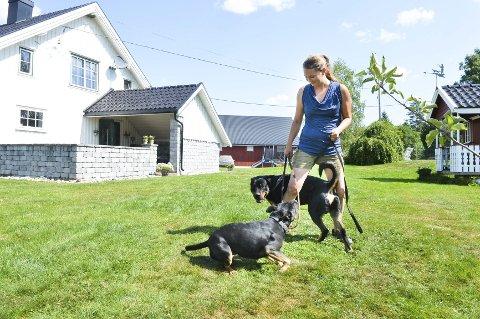 Lekent: Hundene Zoro og Nunu fant tonen under ferieoppholdet på hundesenteret i Ramnes.
