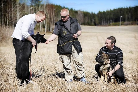 KAMERAT Hunden blir en soningskamerat, sier Frank Lagmannsveen (t.v.) og Kent André Thoresen (t.h.). I midten står Trond Marthinsen som jobber ved Forsvarets Hundeskole.