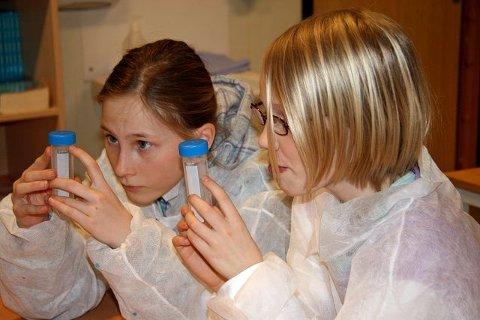 Nøye: Mina Skredderberget og Anniken Rafnum Sjødal måler opp.
