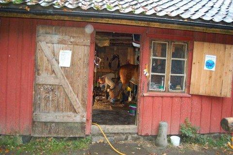 Bygningen på Follo museum som for anledningen brukes av hovslageren var tidligere også smie. FOTO: BJØRN CATO WIIG