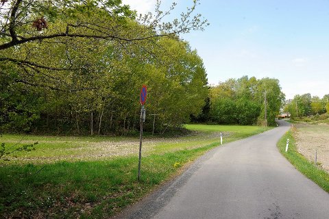 Øst i planområdet, mot Skjellvika, er det tenkt camping og parkering.