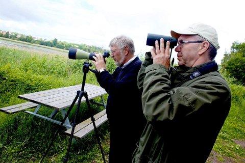 VÅR EGEN FYLKESFUGL: Ornitolog Finn Hauge ( til høyre) og fylkesordfører Per- Eivind Johansen inviterer leserne til å stemme på den fuglen som skal representere Vestfold. Foto: Peder Gjersøe
