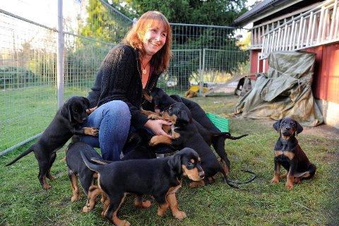 Carina Børresen har brukt mange timer i hundegården med de 11 små valpene. Nå søker hun aktive personer som ønsker seg en turvenn.  Foto: Atle Møller