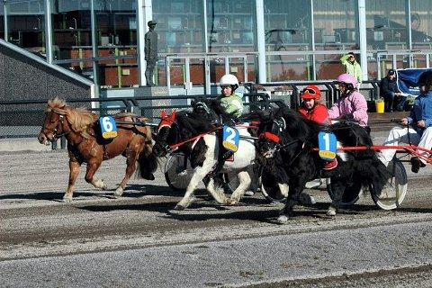 FRAMTIDEN: Det stilte et tosifret antall ponnier til start i Erling Freitags Ponniløp. Vinner ble Allan og Kristine Dale. FOTO: ALEKSANDER LIMKJÆR