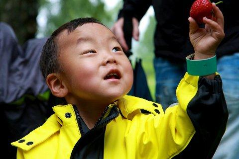 Sondre Skogholt (2 1/2) fra Solbergelva ble kjempeglad for det store bæret han fikk av selveste jordbærkongen.