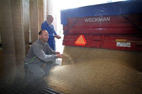 Kim-Reidar Martinsen (på kne) og faren Kjell Martinsen er glade for at kornet er på vei inn på mølla.